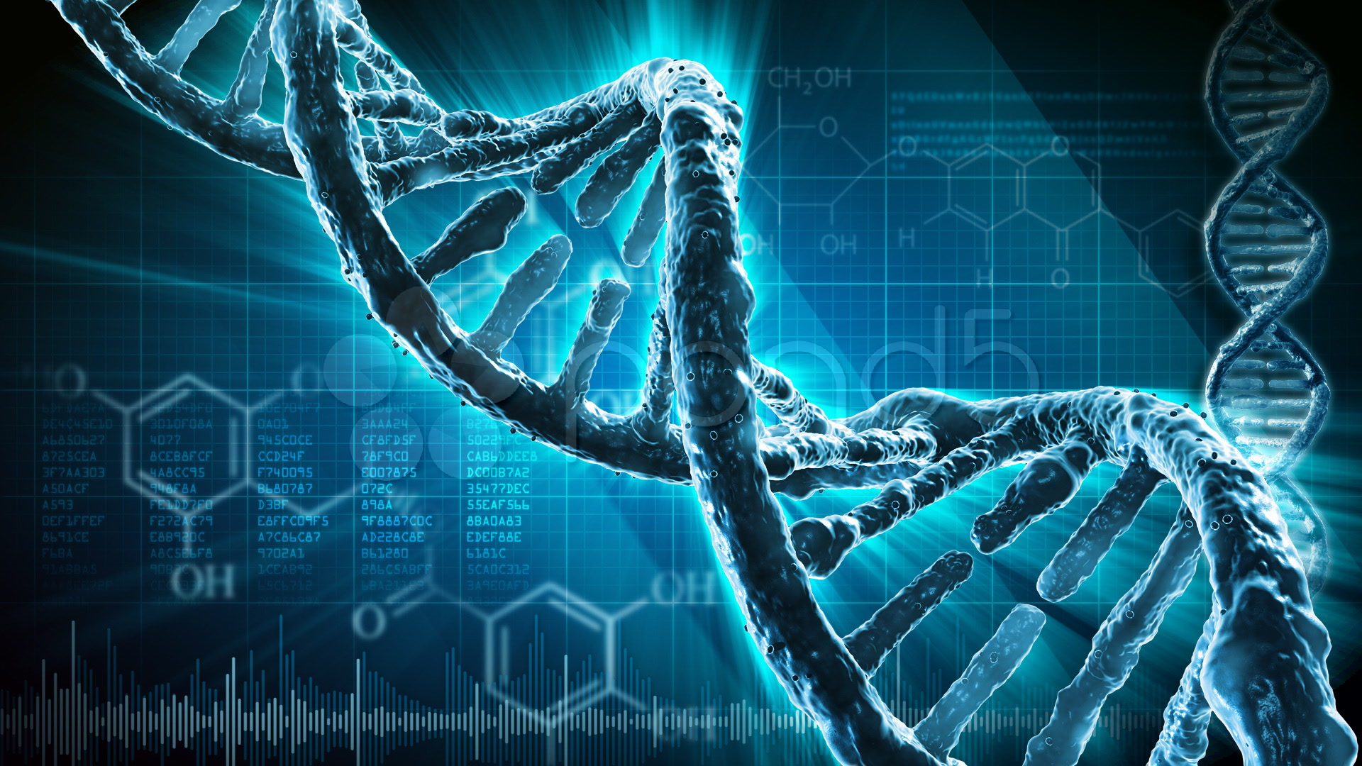 ¿Un Hombre Con 2 ADN? ¿Es Posible?